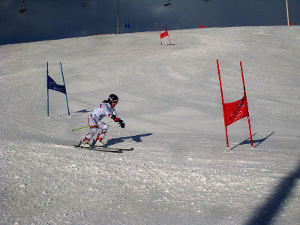 Royal Artillery Ski Team In Action - Photo 1