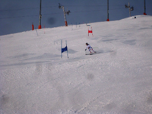 Royal Artillery Ski Team In Action - Photo 2